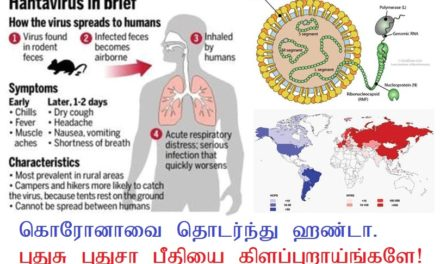கொரோனாவை தொடர்ந்து ஹண்டா Hanta Virus
